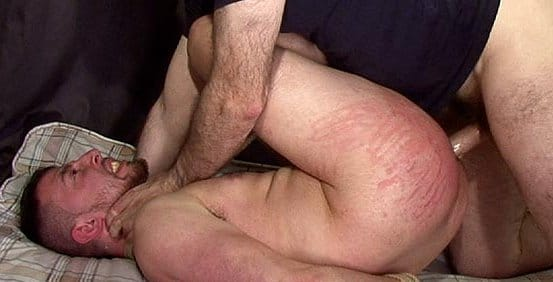 Spankthis-leashed-bull