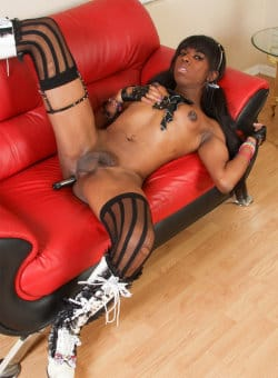 ebony-shemale-galleries-5