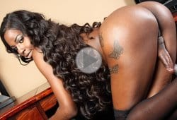 ebony-shemale-videos-foxy-and-ari