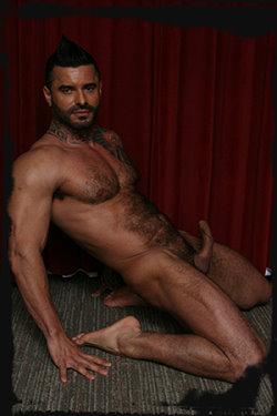 gay-stallion-alexsander-freitas
