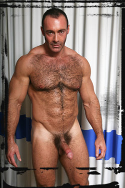 gay-stallion-brad-kalvo