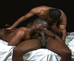 male-spectrum-hot-muscle-dudes-blowjob